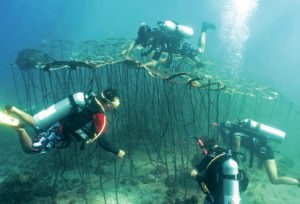 Biorock, Indonesian, Senggigi, art, restoration, marine, habitat