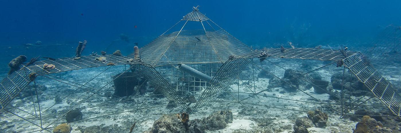 Resultado de imagem para artificial reef curaçao