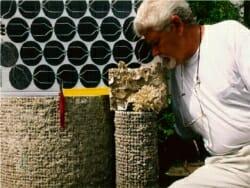 Wolf Hilbertz, Biorock, Seacrete, Seament, Mineral Accretion Technology