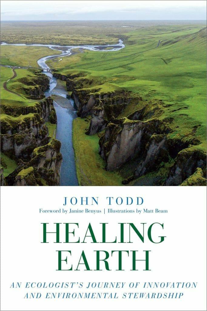 Todd John, Healing Earth 2019