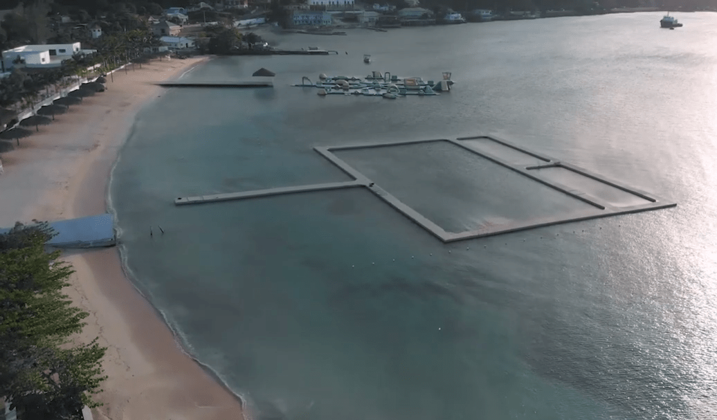 Captive dolphin pollution impacts in Discovery Bay, Jamaica