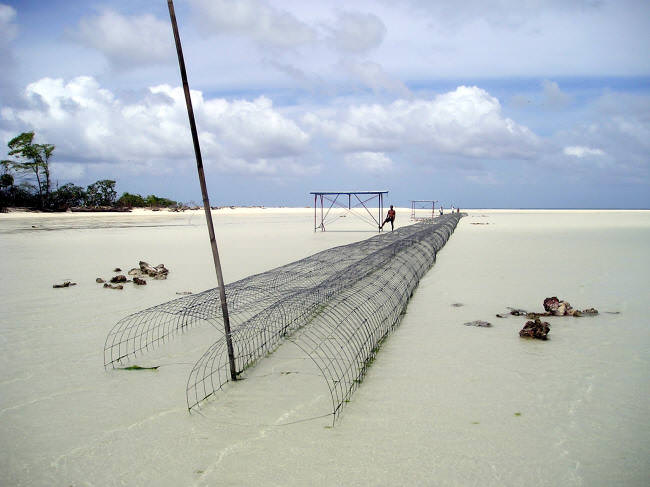Breakwater and racks at extreme low tide. The rocks on the sand are on top of the anodes. (Caspar Henderson)