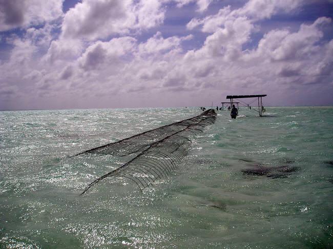 Breakwater from south at mid tide. (Caspar Henderson)